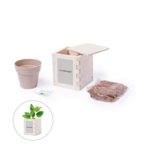 Macetero Biodegradable